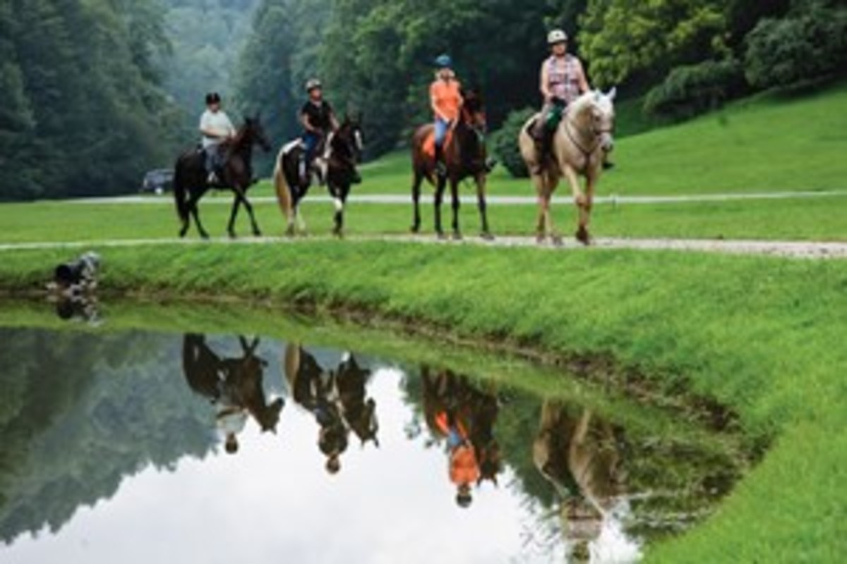 Leatherwood Mountains in Ferguson, North Carolina, offers a wide variety of deeded, maintained trails that  range from easy, wide forest paths to rugged mountain terrain. Day riders and horse campers welcome.