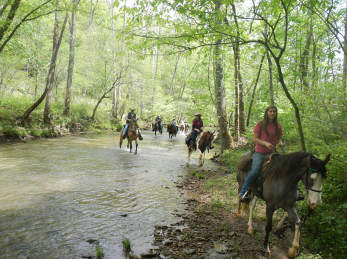 Kick off your summer riding schedule in style by saddling up for the APHA's Triple R Ranch Ride to be held this June in Kentucky's Daniel Boone National Forest.