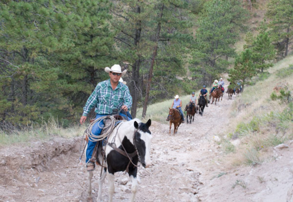 On the APHA's Fort Robinson ride, you'll traverse Fort Robinson State Park's 22,000 acres of picturesque prairies and piney forests teeming with wildlife and breathtaking natural splendor.