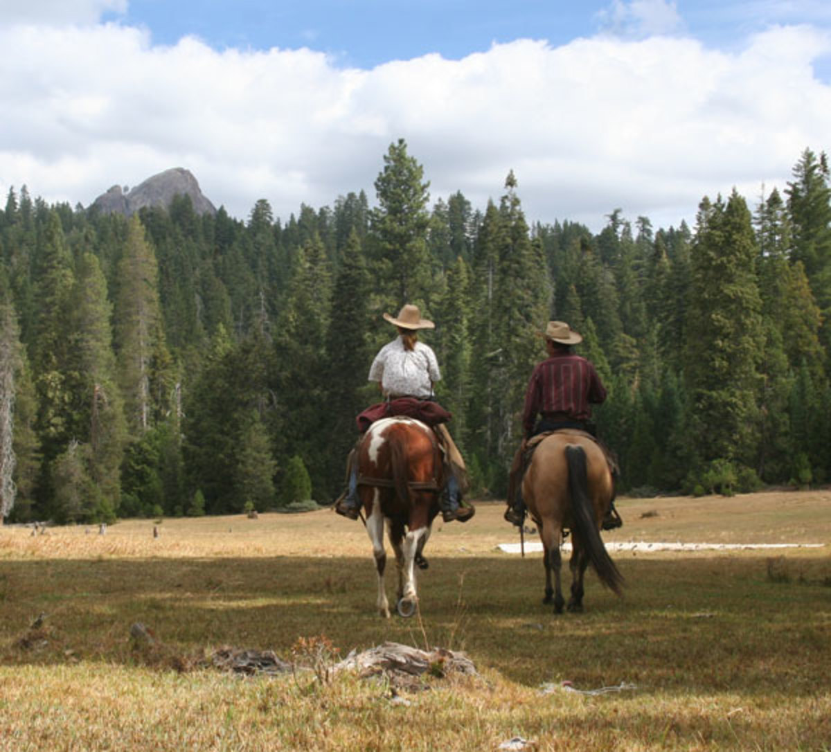 Cowboy Bucket List Adventures combines trail riding with an authentic cattle roundup at Lazy K Ranch, just south of Yosemite National Park.