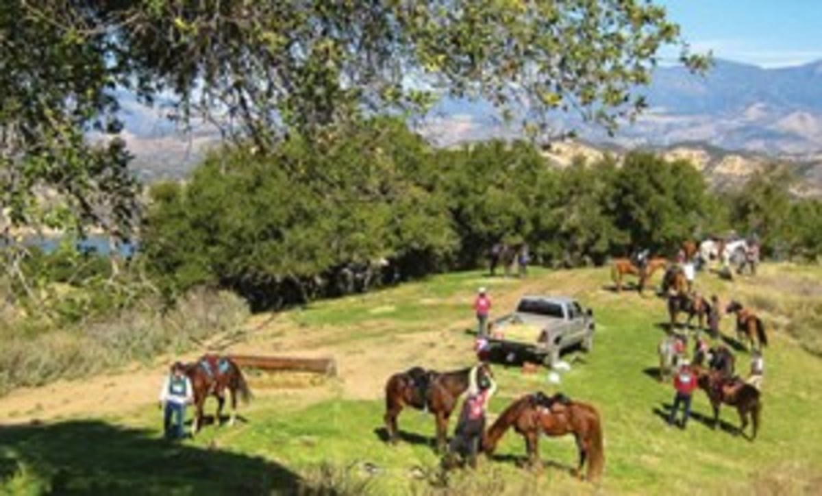 Credit: Audrey Pavia NATRC courses offer magnificent settings with varied terrain in which riders can work with their horses, building strong bonds of true partnership.