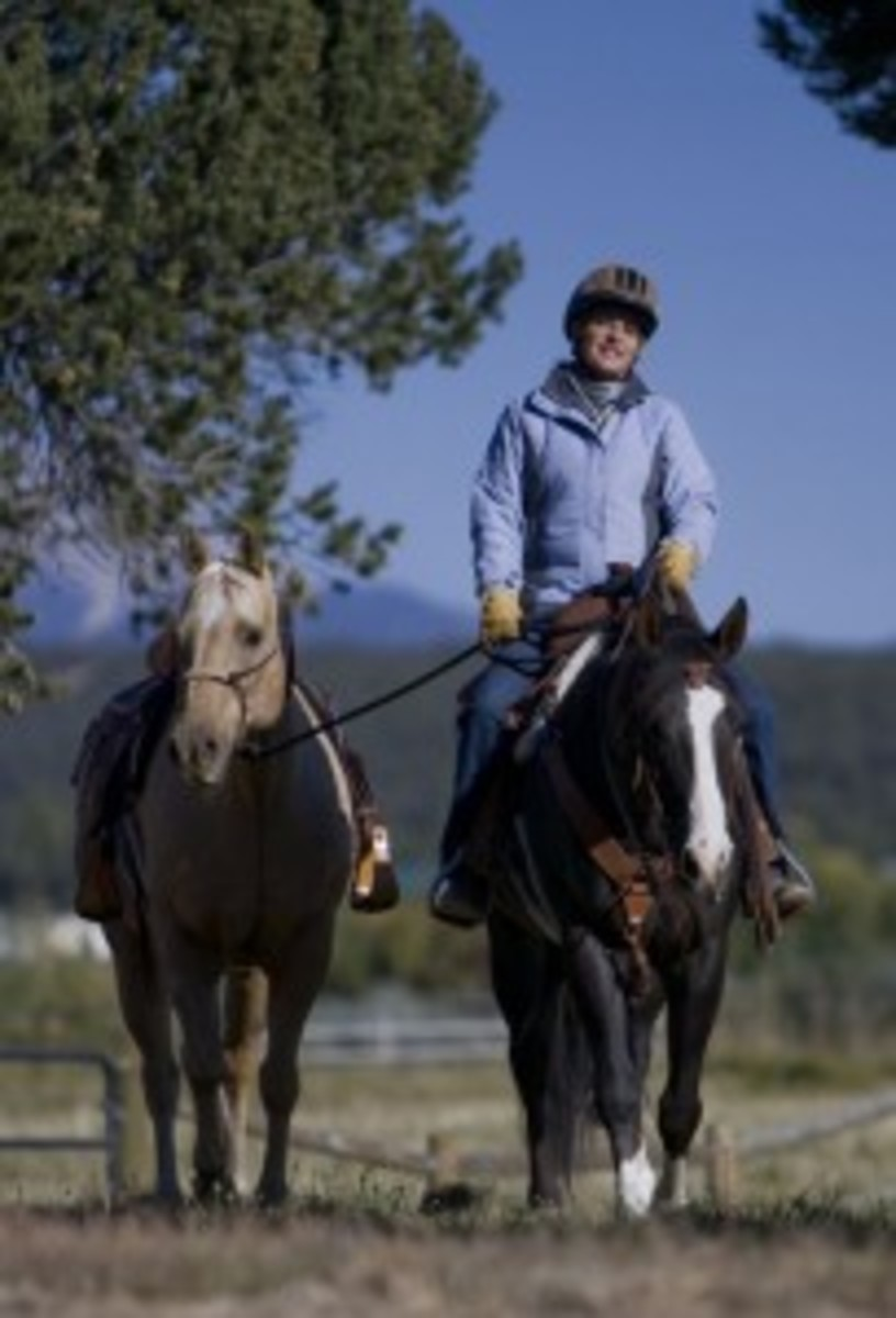 Learn how to safely pony a second horse to help introduce a new horse to a trail, lead a pack horse, or assist a young rider. Photo by Heidi Melocco