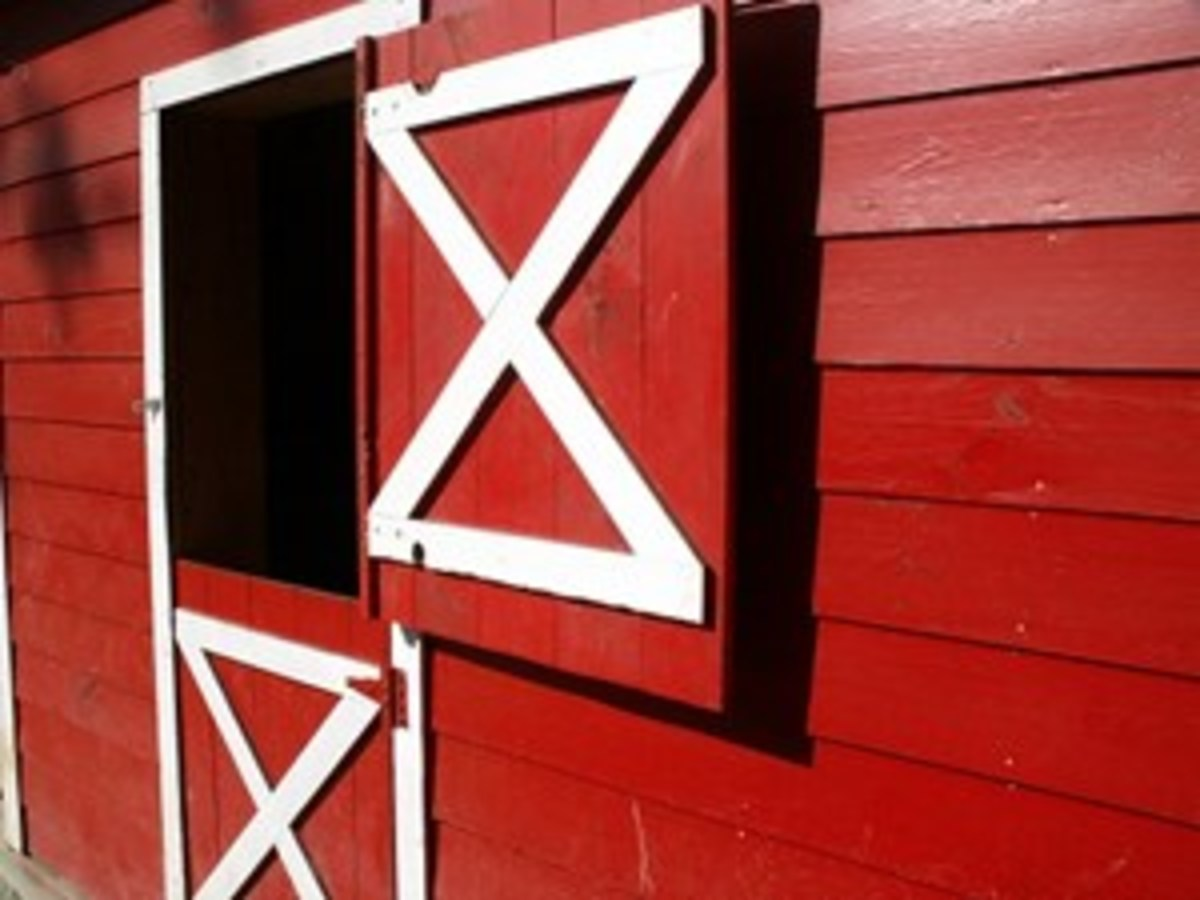 By evaluating these 10 aspects of your barn, you'll be well on your way to having happy horses, happy humans, and a clean, organized barn all year long.