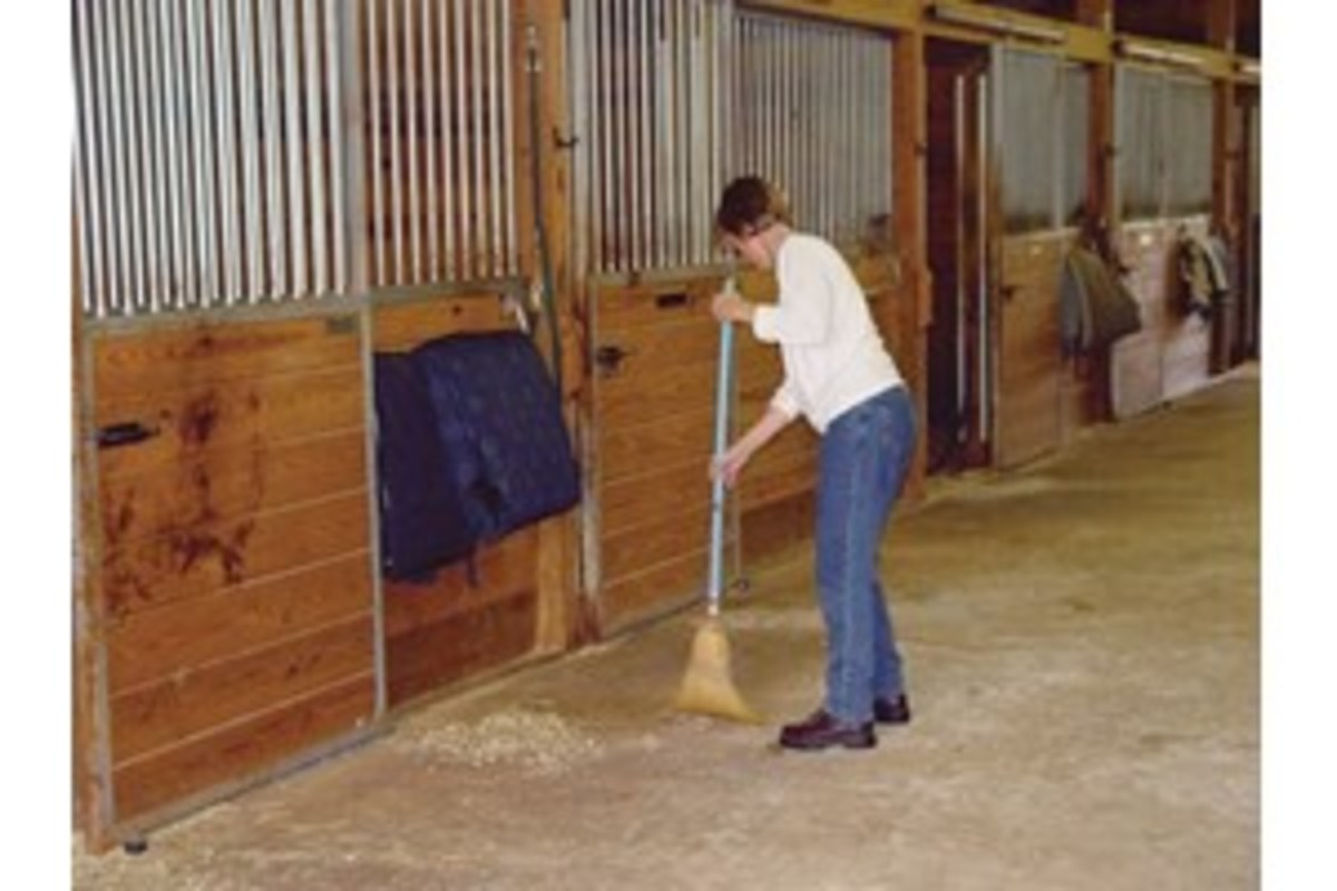 No matter how careful you are, grain will escape to the floor. Sweep the barn aisle frequently.