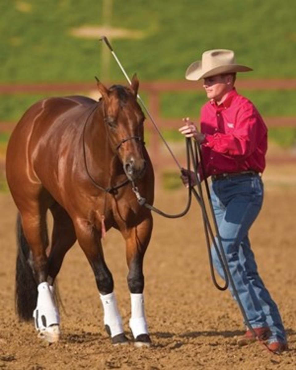 """To earn your horse's respect and trust, you need to make him comfortable for doing the right thing and uncomfortable for doing the wrong thing,"" says Clinton Anderson. Shown is Anderson asking a horse to yield the forequarters."