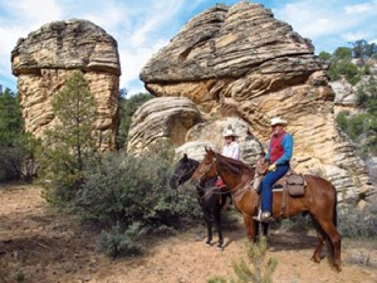 "Charlene and Kent Krone ride Nate and Cowboy on the trail to Snow Canyon. ""Working our way southeast, we rode by multicolored rock formations and a bounty of plant life: junipers; beavertail cacti; scrub oak; and manzanita,"" the Krones note"