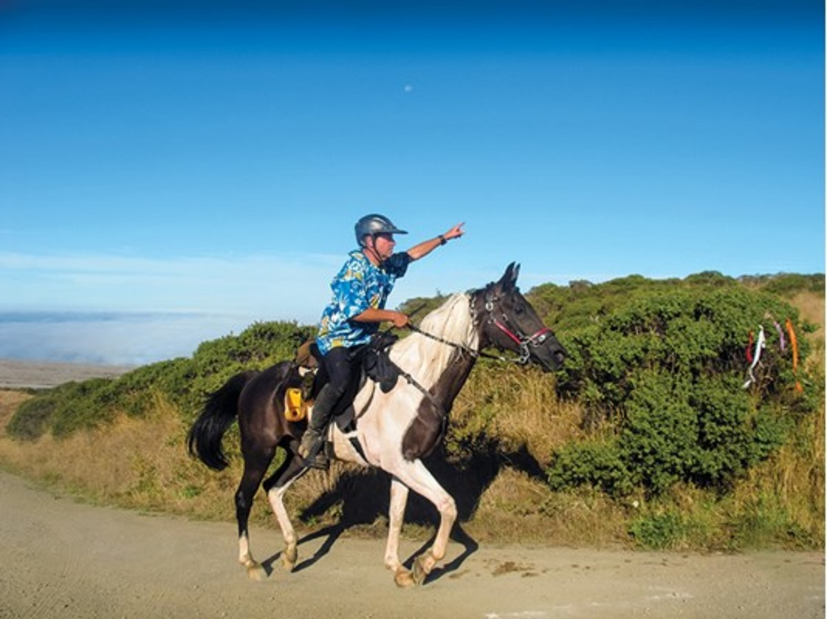 "Credit: Lari Shea ""The veterinarians and other riders at American Endurance Ride Conference events are very helpful and encouraging,""notes Shea. Here, AERC competitor John Fenger, aboard Pryvate Party, points out a turn to the left at a Mendo Magic Endurance Ride."