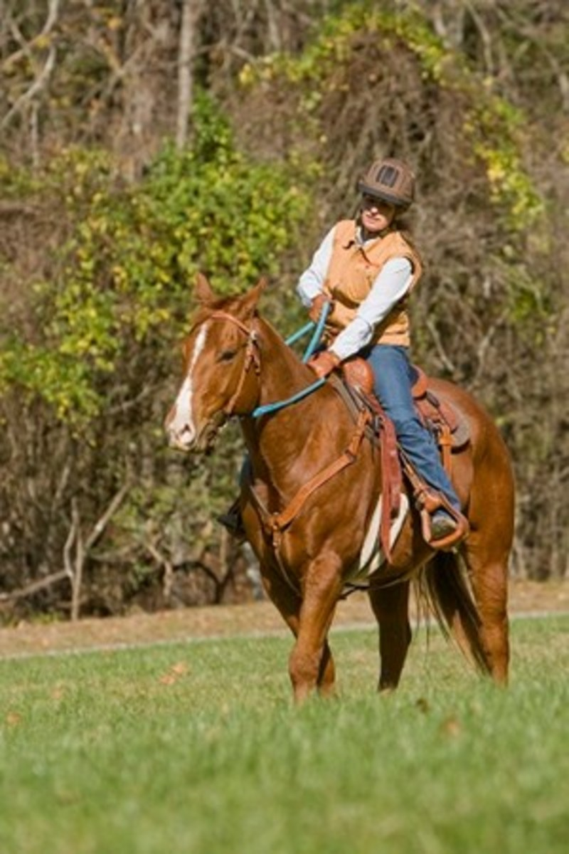 Julie Goodnight demonstrates the one-rein stop on the trail.