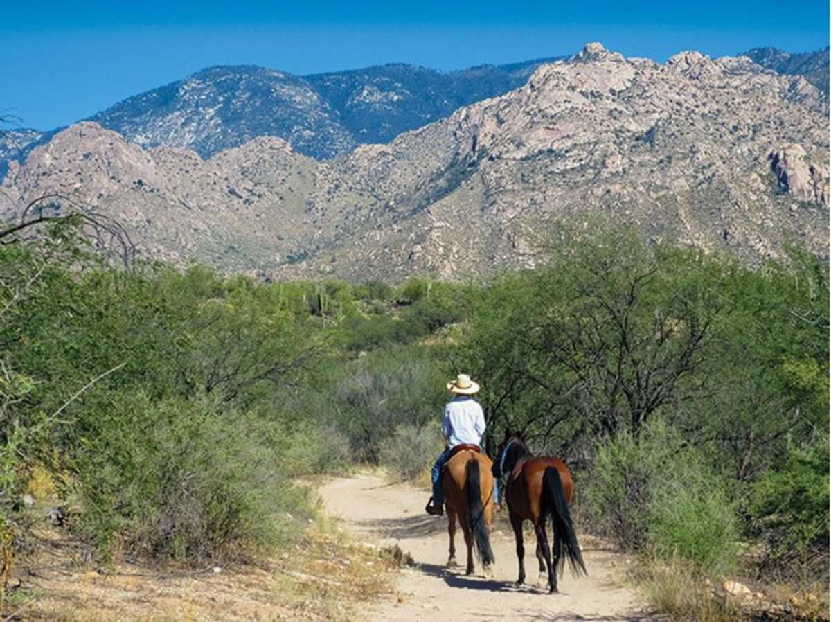 """""""In May and June, the daytime temperatures start to soar in the Arizona desert,"""" notes Jule Drown. """"Riders tend to go out on the trail early in the morning or perhaps late afternoon, depending on preference and time flexibility. Here, Drown rides down a trail below the Catalina Mountains at the end of summer."""