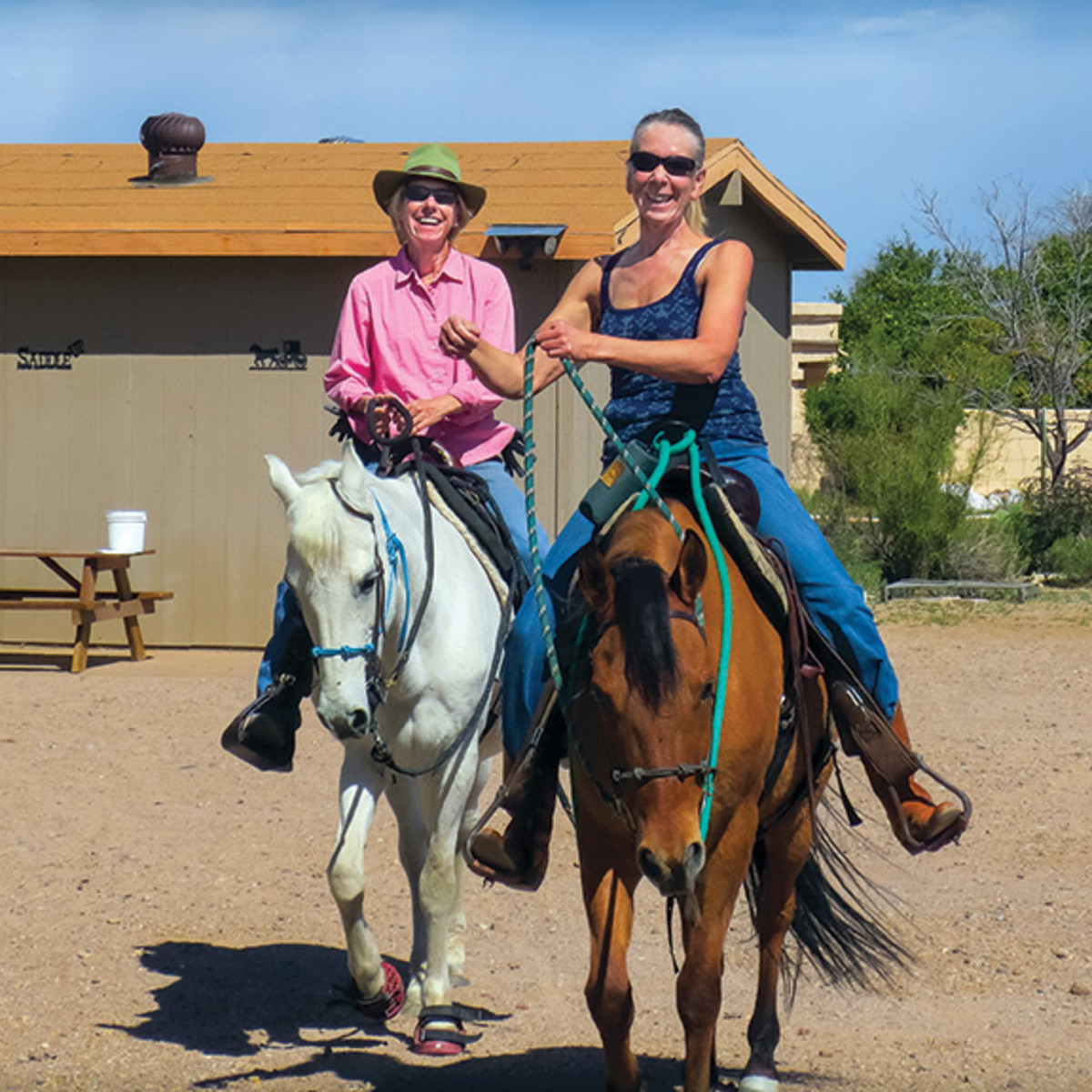 """""""My favorite summer riding shirts are loose and long-sleeved, made from Coolmax fabric,"""" says Jule Drown, shown with her sister, Debbie, aboard Drown's Paso Finos, Porcelana and Clementino."""
