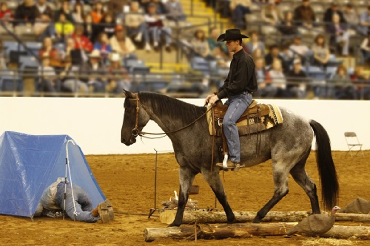 The Great American Trail Horse Sale's unique setup allows prospective buyers to evaluate the sale horses in a trail-like environment.