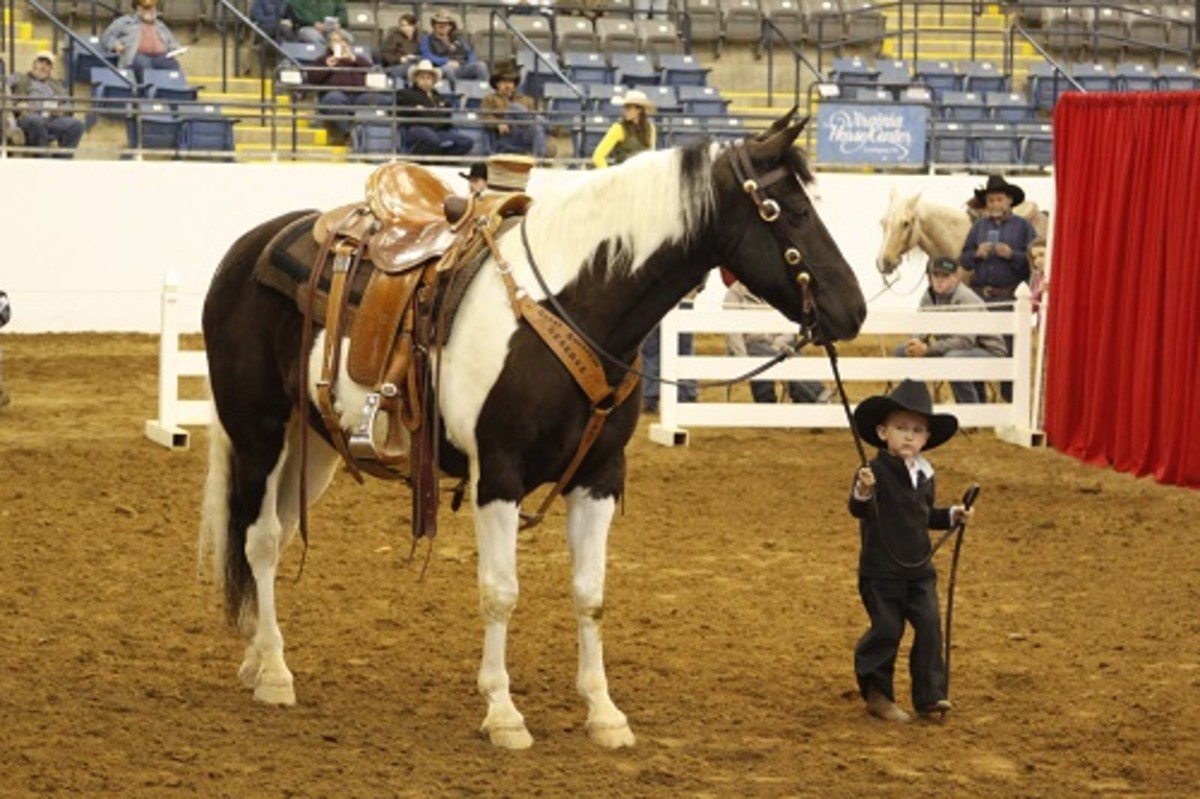 In the Great American Trail Horse Sale's 12-and-under age division, all children who compete are placed and win prizes.