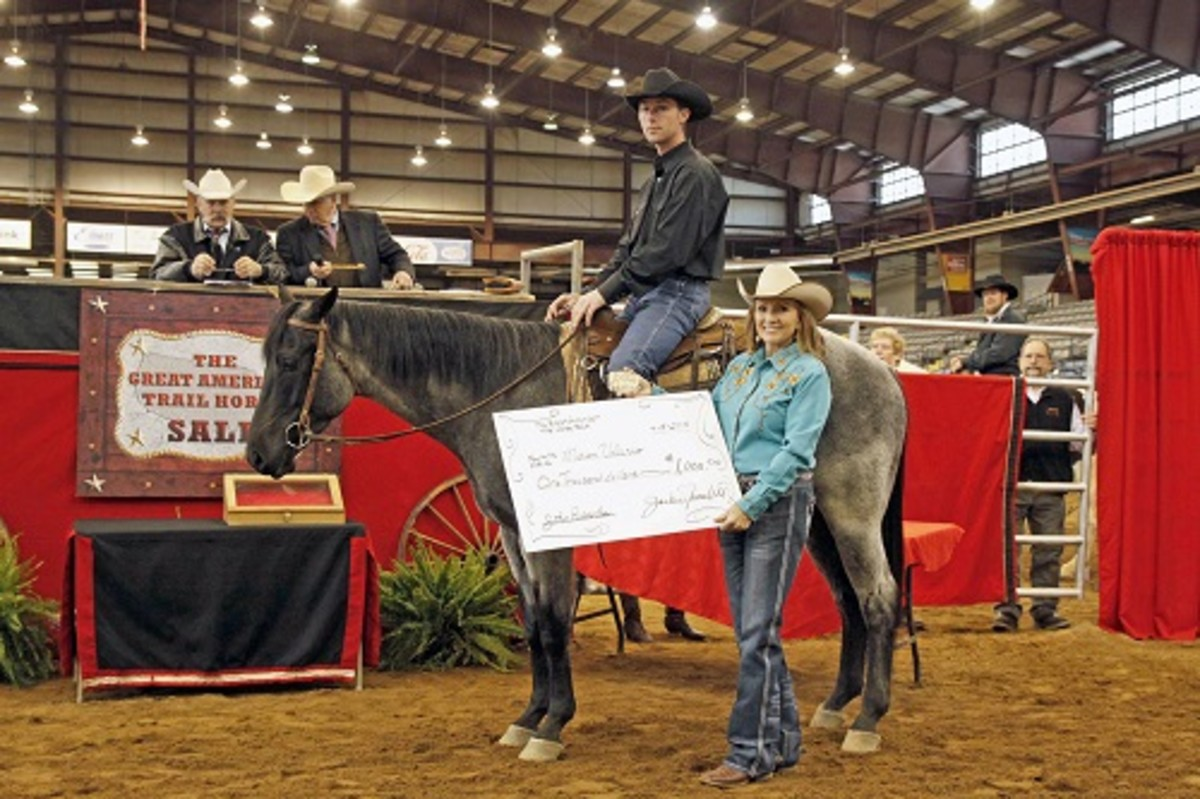 Every year, the sale offers excellent trail horses for $1,000 and up.