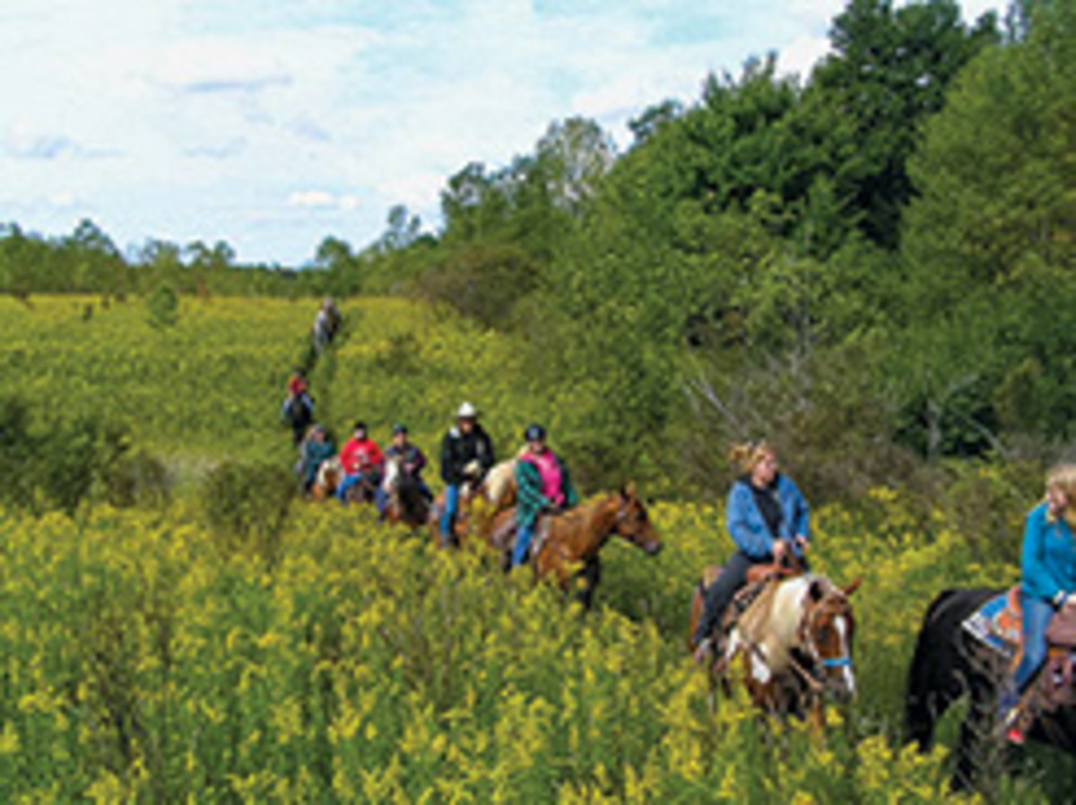 Credit: Missy Whittington Here, trail riders enjoy riding on Boutwell Hill State Forest land in the Chautauqua County Equestrian Trail System, which includes the development of 35 miles of equestrian-accessible trails using public and private lands.