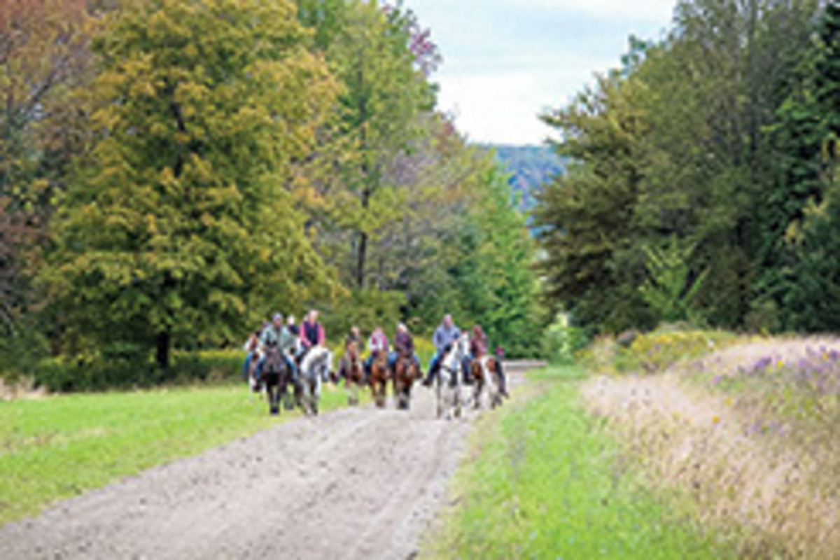 Credit: Missy Whittington Riders on the Chautauqua County Equestrian Trail System entering a clearing. Numerous truck trails in the system provide sustainable footing for rainy-season riding.