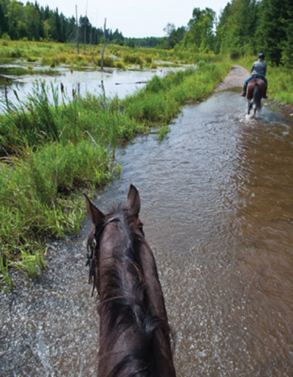 Credit: Shawn Hamilton Photo Horse Country Campground offers spectacular trail riding in open fields, forested trails, and along the Ottawa River.