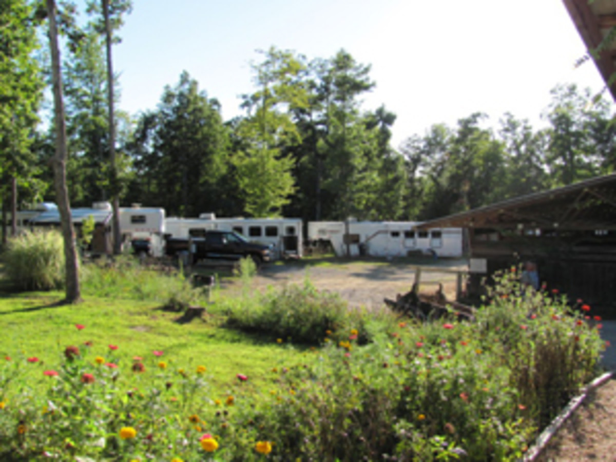 Timber Ridge Horse Campground offers 25 sites with electrical/water hookups, cabin rentals, two large barns, turnout corrals, and miles of trail access.