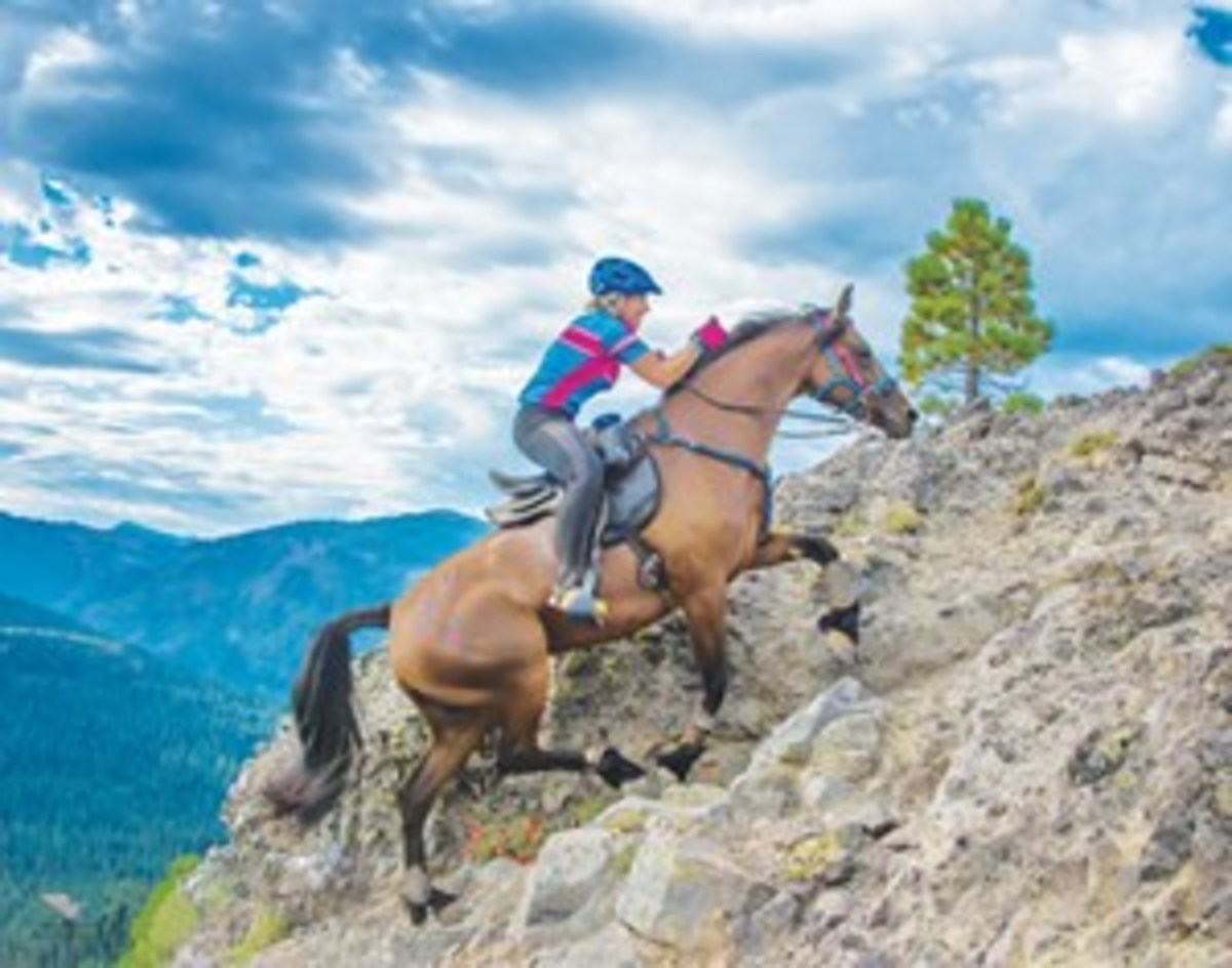 Credit: Courtesy of the AERC Dawn Tebbs, of Auburn, California, on Beylis Comet. The team placed sixth in the 2015 Western States Trail Ride (known as the Tevis Cup) 100-mile ride with a ride time of 16 hours, 3 minutes over dramatic trail terrain.