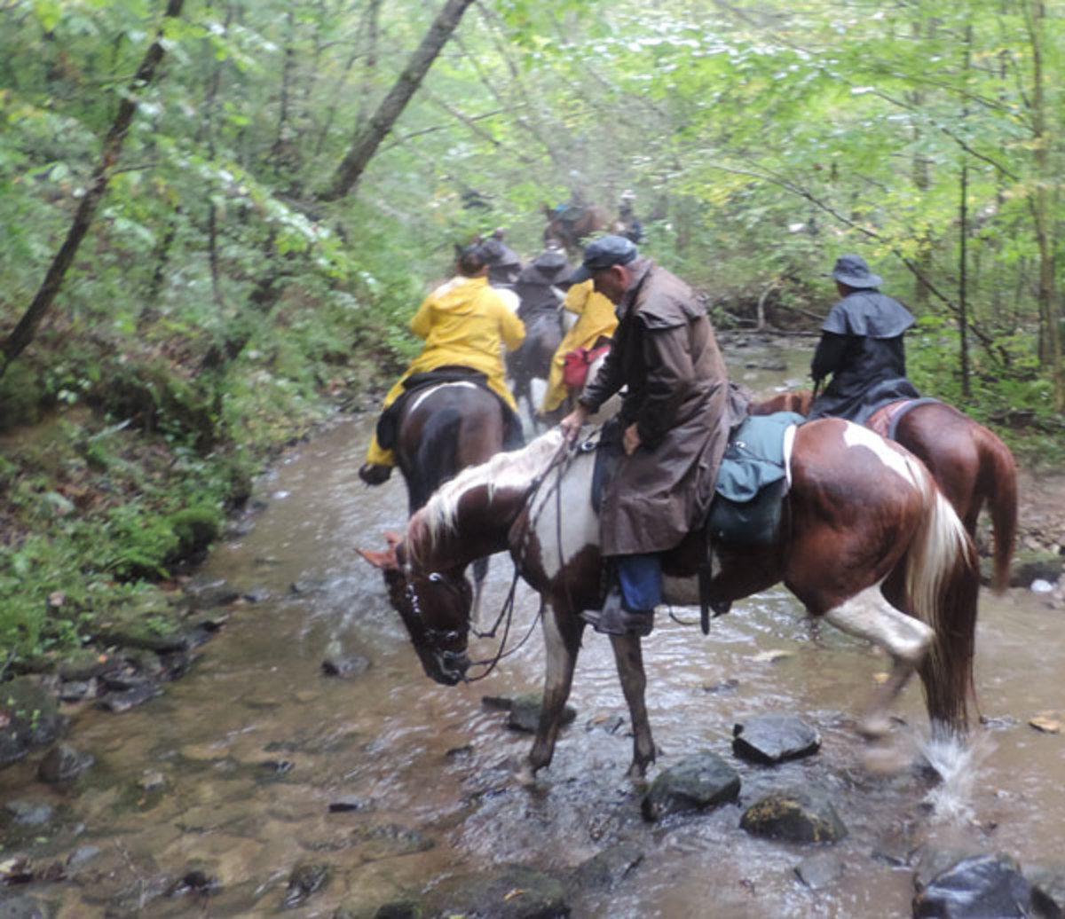 The 35th Annual Sheltowee Trail Ride will be held at Elkins Creek Horse Camp in Pedro, Ohio, adjacent to Wayne National Forest.