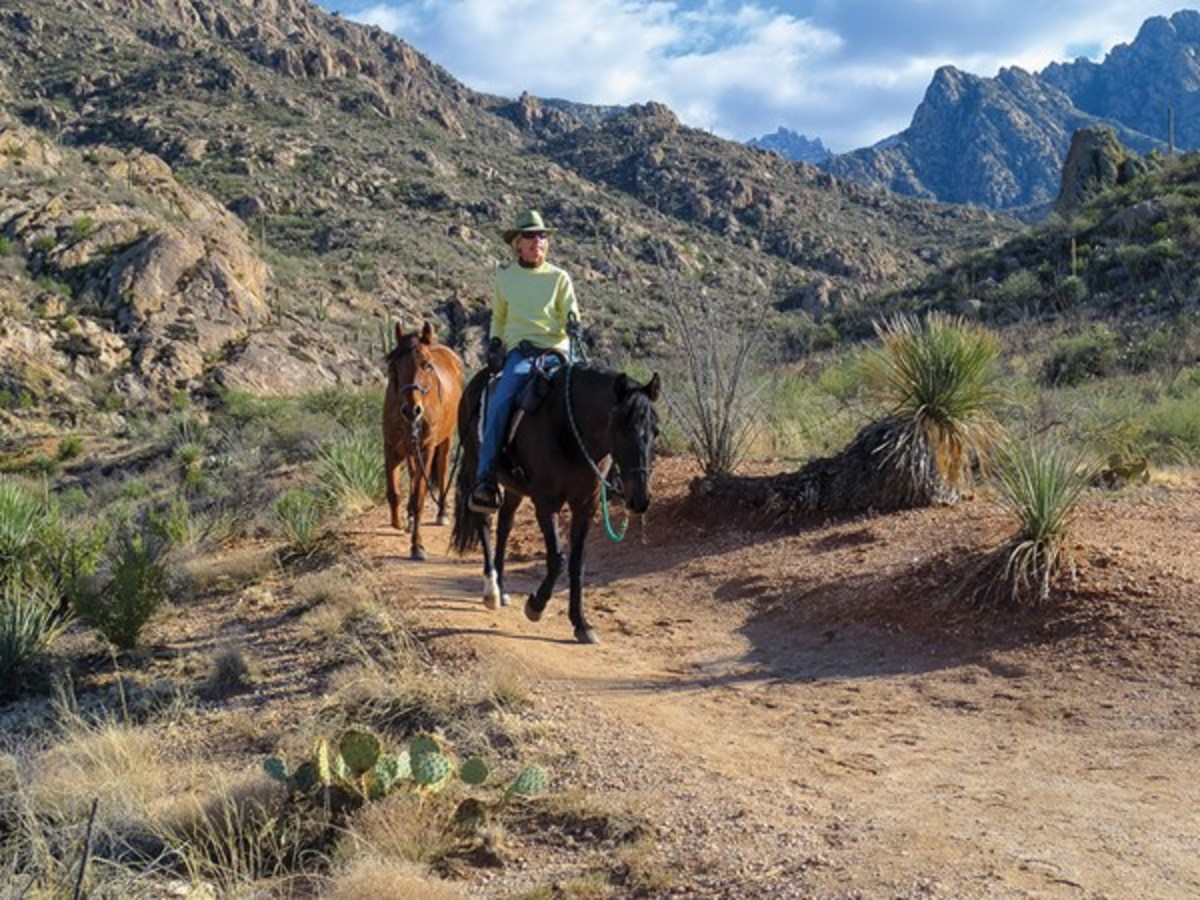 From November through April, the warm, sunny Arizona desert offers winter trail riding at its finest. Here, Jule Drown rides her gelding, Alegro, while ponying Clementino, on a beautiful winter's day near Tucson's Santa Catalina Mountains.
