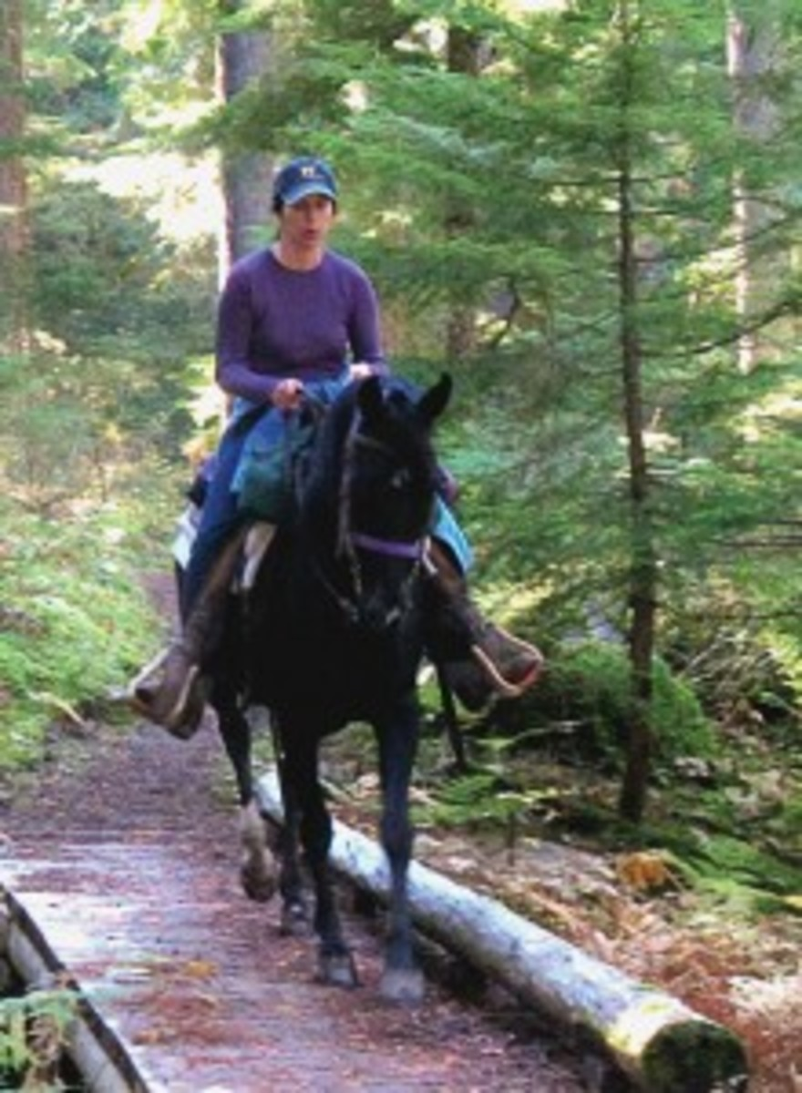 Courage is being scared to death...and saddling up anyway. -- John Wayne   Photo Courtesy of Rhonda Massingham Hart