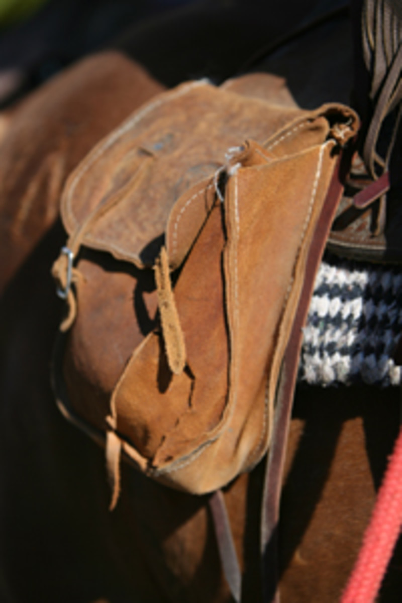Pack most of your gear into your front saddlebags to keep weight off your horse's kidneys. | Photo by Heidi Nyland