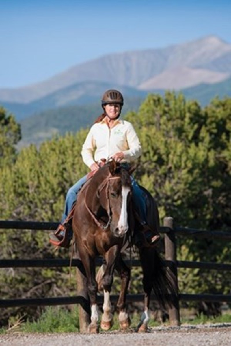 Top trainer/clinician Julie Goodnight rides her finished horse, Dually, in a bit that has a low and wide port mouthpiece and five-inch shanks. With this bit, her goal is to ride with a relaxed hand and draped reins.
