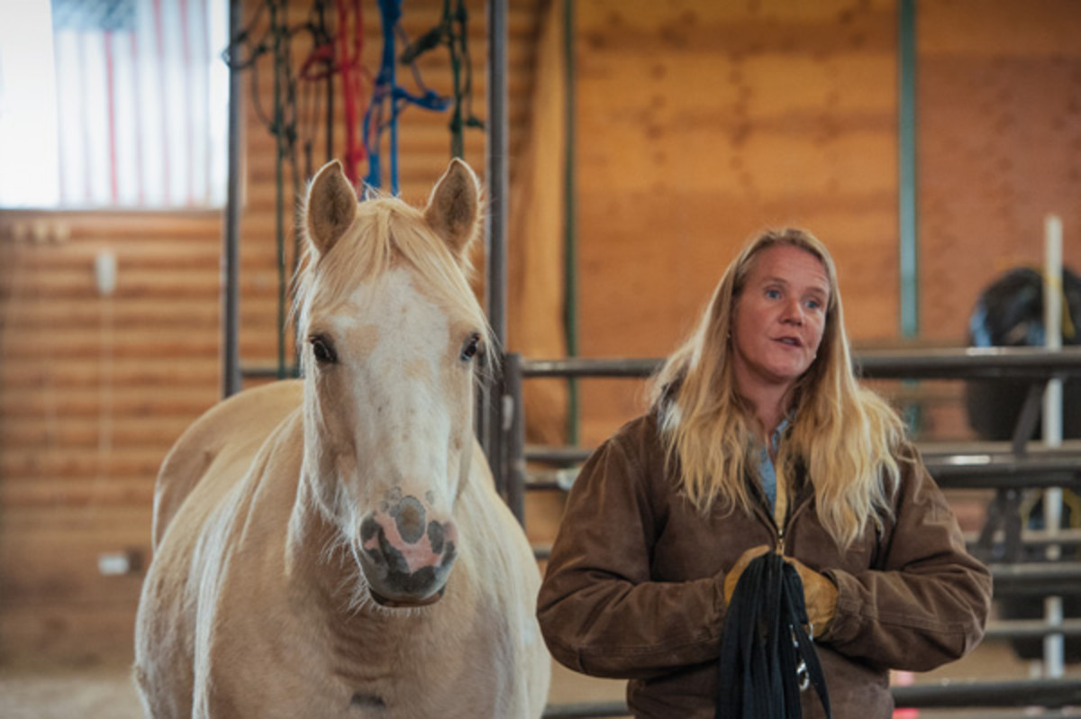 Through her Reach Out to Horses program, Anna Twinney helps horse owners build a connection and trust-based partnership with their equine friends.