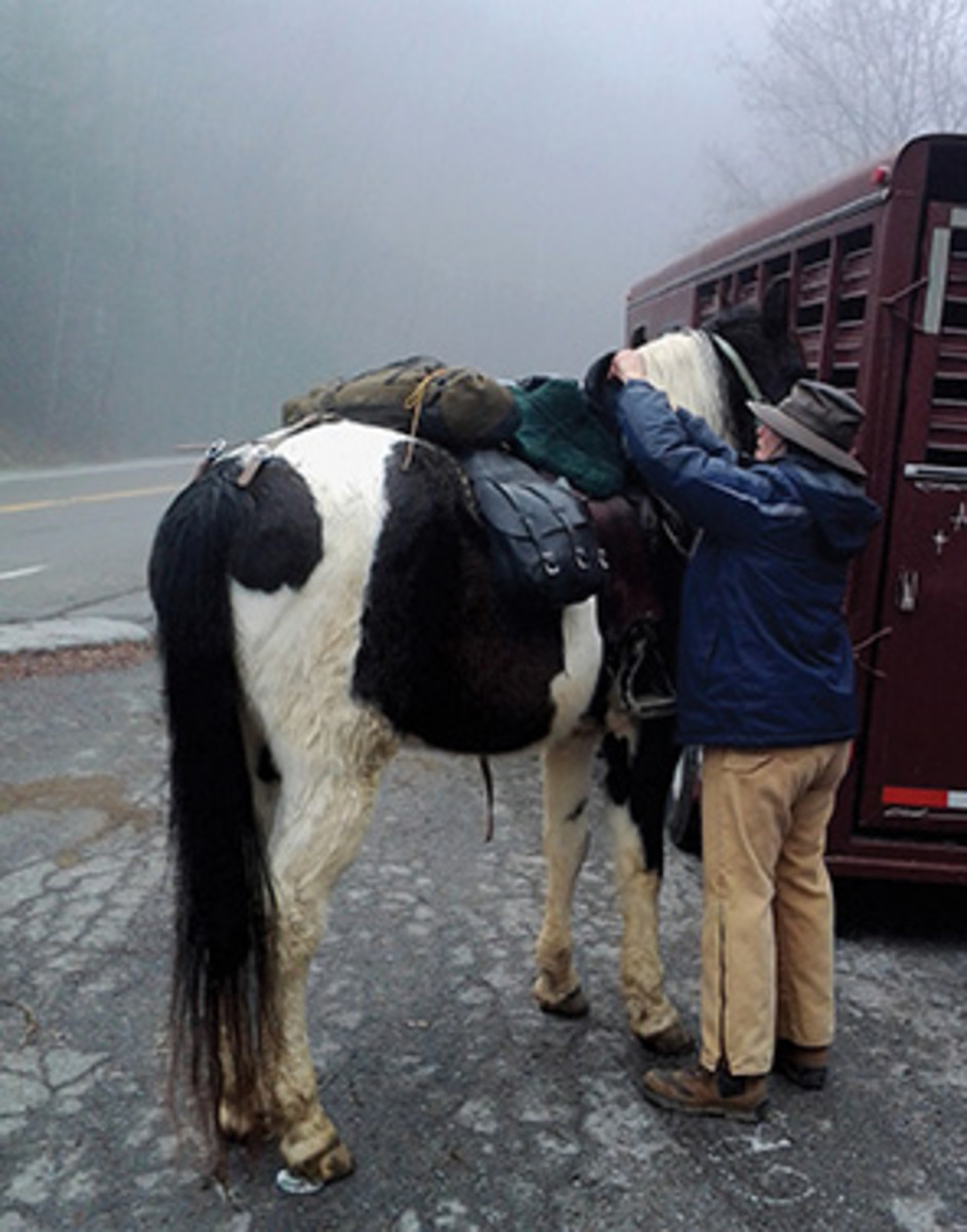 "Tori Tolliver, a seasoned Tennessee guide, saddles up her 17-year-old Tennessee Walking Horse, Comanche, for a cold December ride in the Appalachian Mountains. ""Comanche wore an endurance saddle from Tucker Trail Saddles,"" says Cate Lamm. ""It looked extremely comfortable and fit Comanche well."""