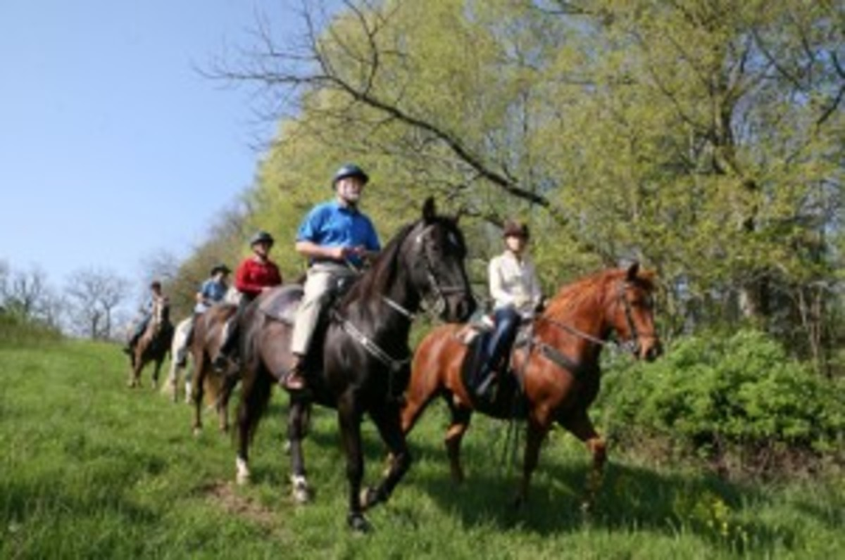 Darley Newman and Shaker Village's naturalist, Don Pelly, riding with locals through Shaker Village trails. | Photo by Chip Ward