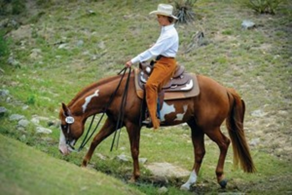 """When Gunner was well enough for me to ride again, I decided competitive trail would be something fun for us to do — just go trail riding and do some fun little things,"" Jan Garvin says."