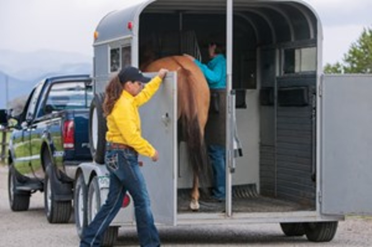 Keep your horse's nose pointed at the trailer — no matter what.
