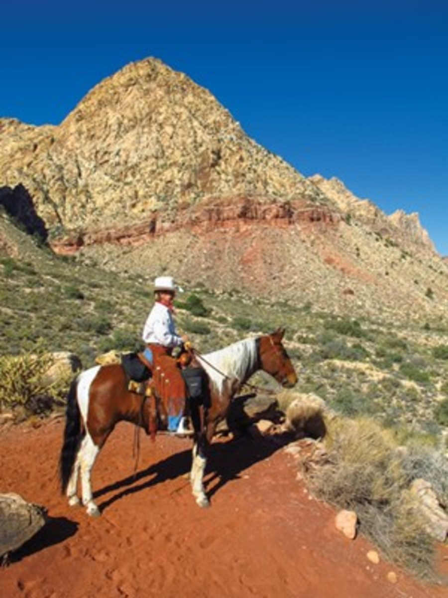 Mary Sue Kunz, one of the found ers of the Bristle Cone Chapter of the Back Country Horsemen of Nevada, guided the Krones on rides in Red Rock Canyon. She's shown here aboard her horse, Kodak. She was delighted to share her deep knowledge of the area with us, say the Krones.