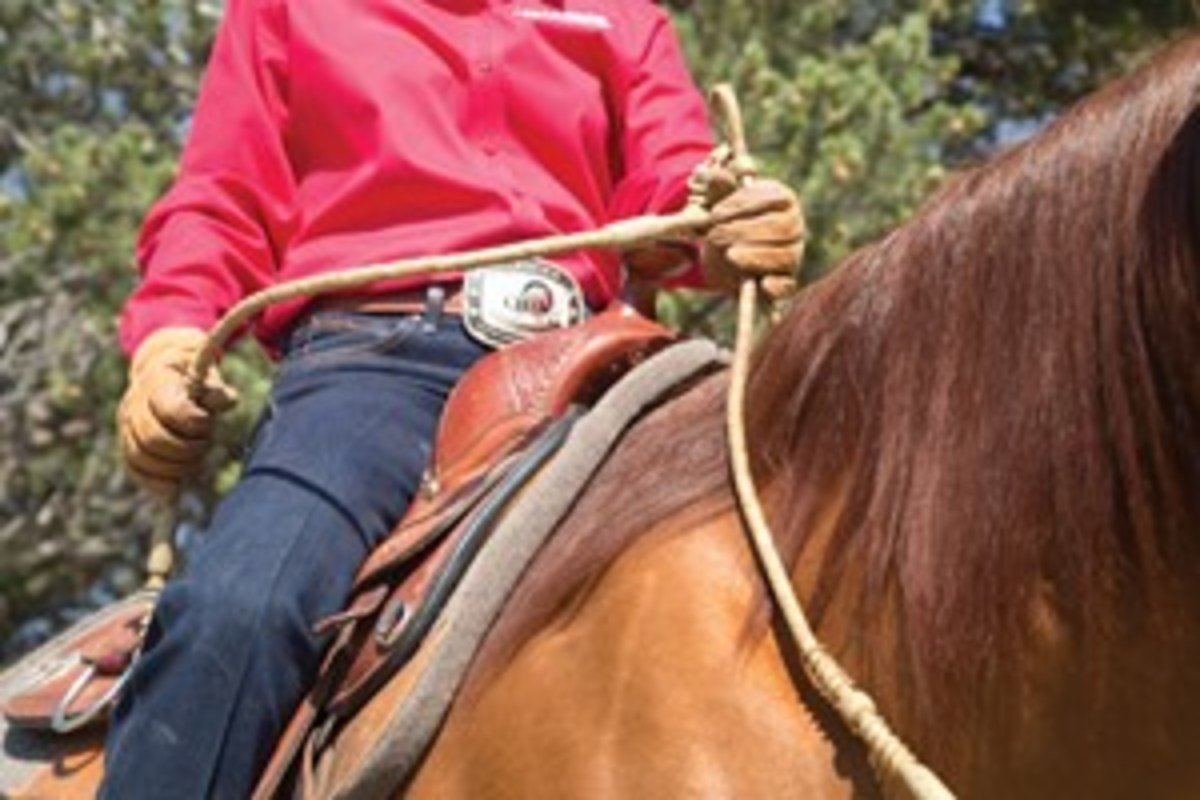 With romal reins, you ride with two hands — one hand cues your horse, while the other holds the romal attachment. These reins are best used on a well-trained horse that knows how to neck rein.