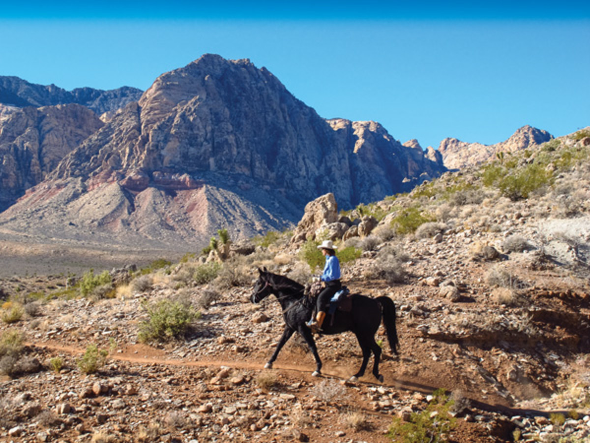 Look beyond Nevada's parched deserts and gam bling glitter and you'll find a treasure trove of  delights for adventurous trail riders. Shown is Char ene Krone aboard Nate on the Landmine Trail loop in Red Rock Canyon National Conservation Area.