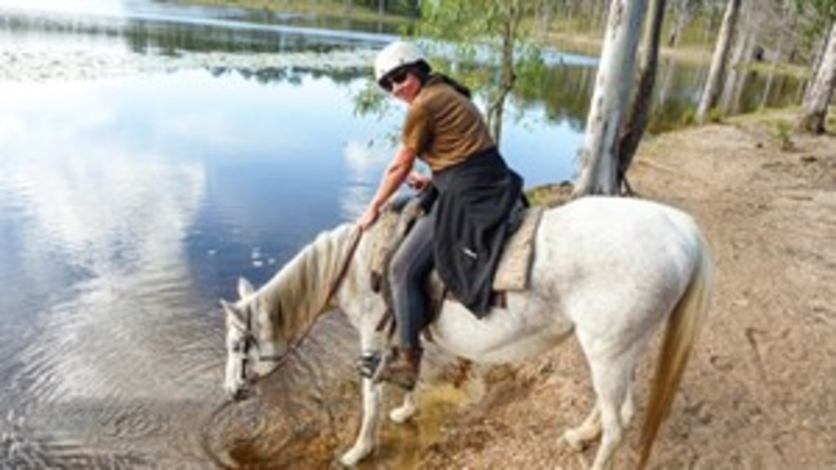 Credit: Steve Douglas When I was a horse-crazy little girl, I became obsessed with Australia, says Audrey Pavia, shown trail riding in Brisbane, Queensland. I imagined a vast land where brumbies roamed wild and koalas played in the gum trees.