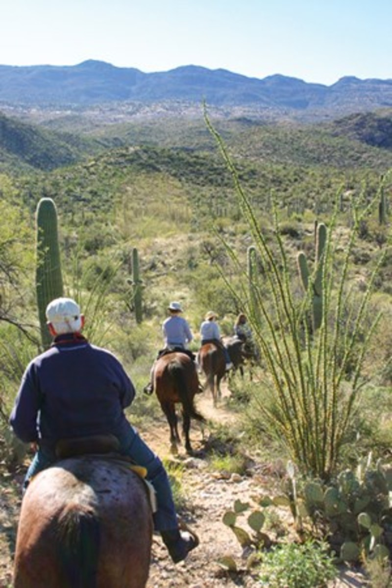 A scenic ride back to the ranch after the Breakfast that offer breathtaking, 360 degree views Ride, held alfresco.