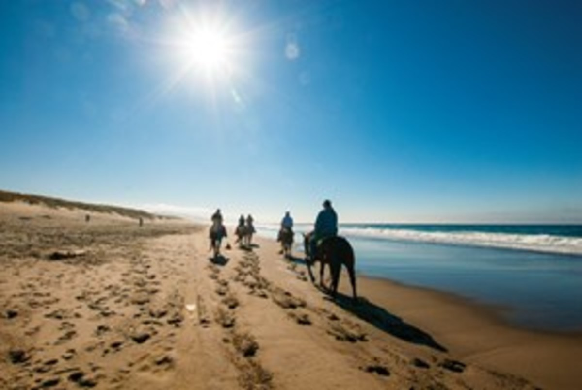 Credit: Courtesy of Green Acres Beach & Trail Rides