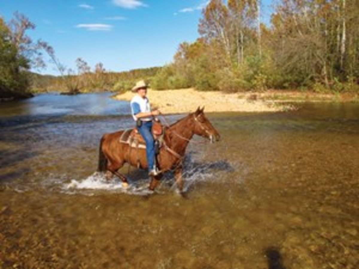 "Kent Krone and Cowboy cross the Jacks Fork River on the Cross Country Trail Ride in Eminence, Missouri. ""We went on the late-October ride, which featured 500 riders, brilliant fall foliage, and Southern style lunches cooked right on the trail,"" note the Krones."